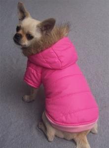 abrigo plumas perro
