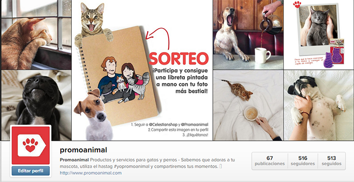 instagram animales