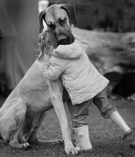 tener un perro