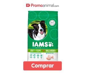 comida_para_perros