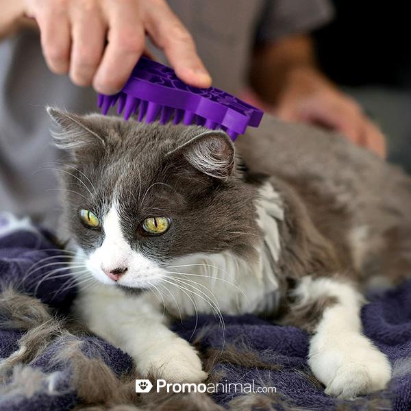 Como fortalecer el pelo de mi gato