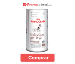 prod_cuidadoscachorro
