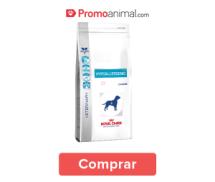 prod_seborrea_perro2